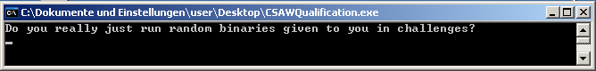 CSAW CTF 2012 - Reversing 300 - normal execution