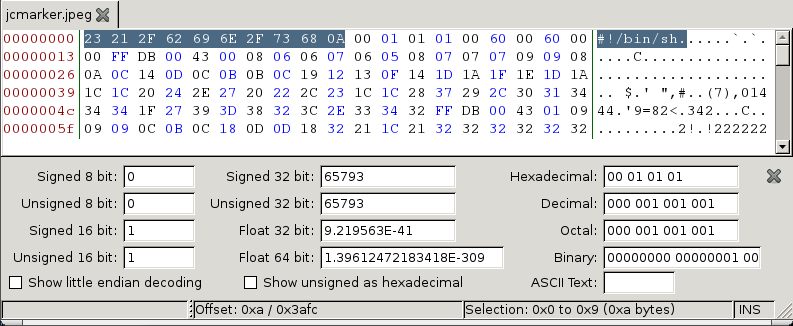 PoliCTF 2012 - Bin-Pwn 100 - Magic File Header